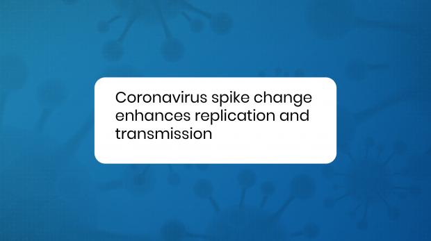 Coronavirus Spike change enhances replication and transmition